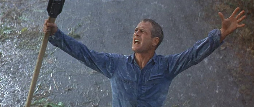 Cool Hand Luke (1967) 17